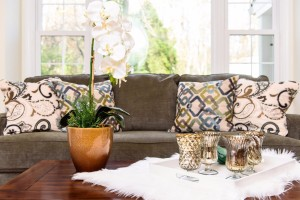 Vacant Home Staging Living Room Accessory Details www.Organized-by-Design.biz