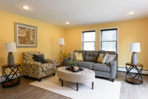 Vacant Home Staging of Family Room www.Organized-by-Design.biz