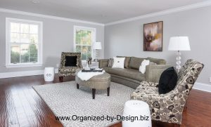 Vacant Home Staging of Living Room